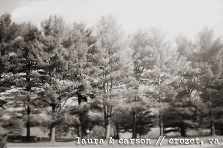 laura and carson 39s rustic winter wedding charlottesville creative wedding