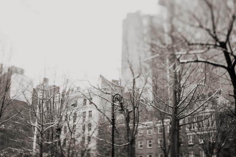 new york winter joyeuse photography