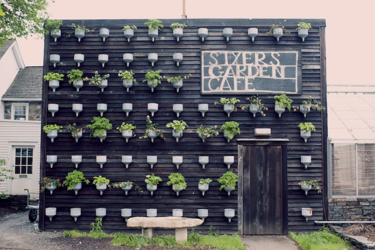 steer's garden cafe joyeuse photography